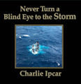 Cover of Never Turn a Blind Eye to the Storm