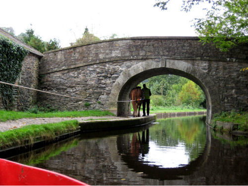 Picture of horse pulling canal boat under a stond bridge, taken by Judy Barrows, Llangollen, Wales, Octover 2006