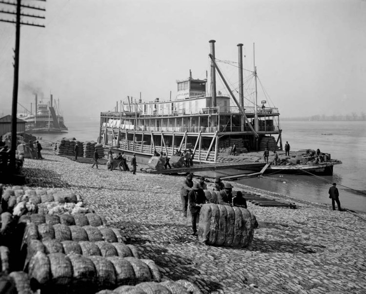 Roustabouts rolling bales of cotton ashore at Memphis, Tennessee, circa 1905, from Detroit Publishing Co., via Library of Congress.